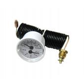 Термоманометр Ferroli 39812530